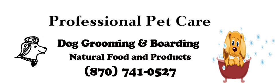 Dog Grooming Banner